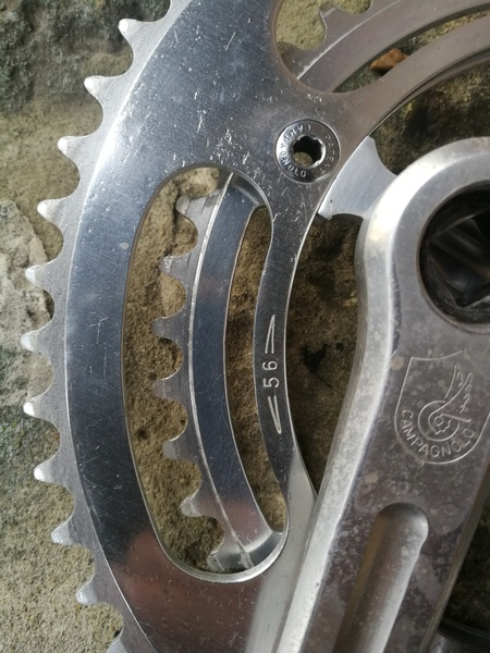 Vintage Campagnolo Chainring 56 tooth